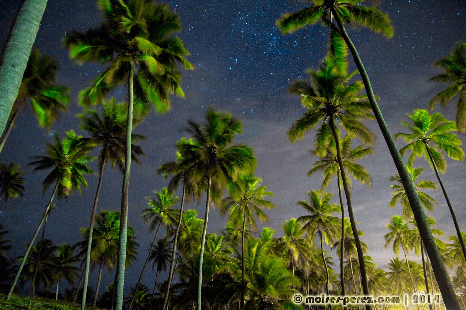 Night in the beach, Salvador