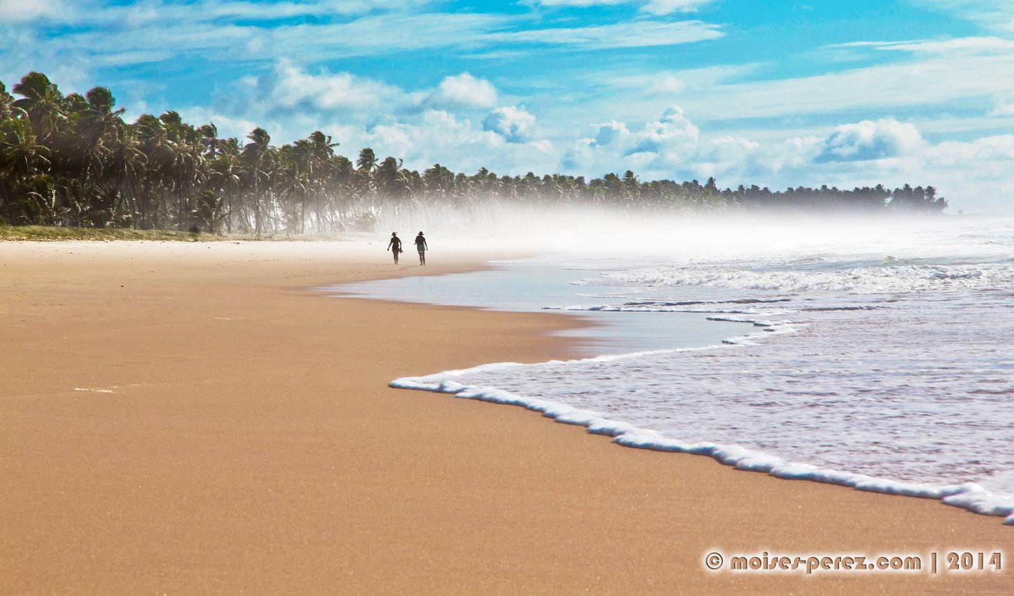 Paradise beach in Praia do Forte
