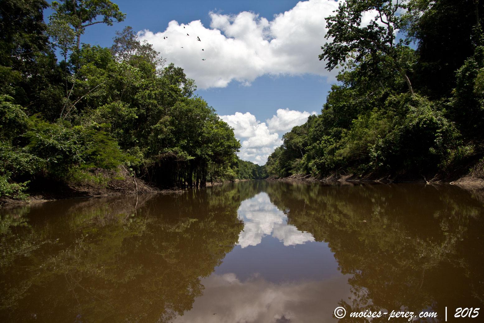 Reserva Pacaya Samira