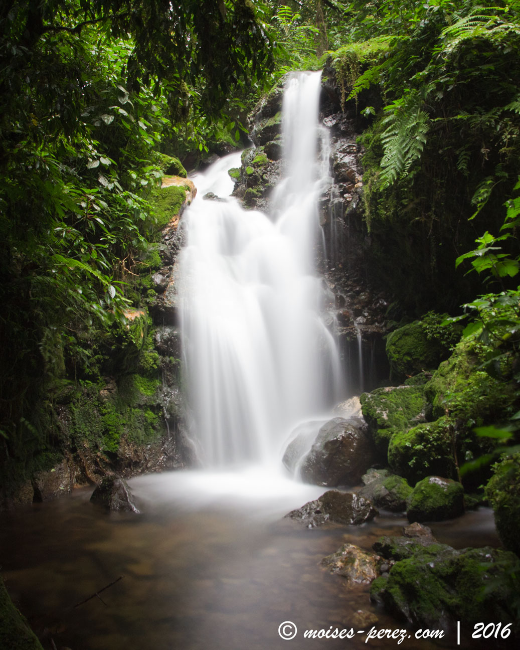 Waterfall in Bwindi NP, Uganda